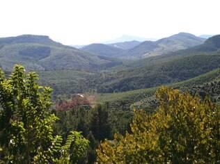 Vista das montanhas de Monte Verde