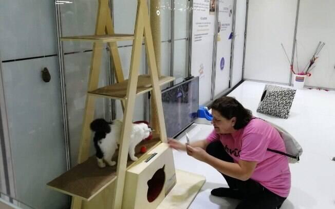 Espaço da Adote um Gatinho para brincar com os gatos
