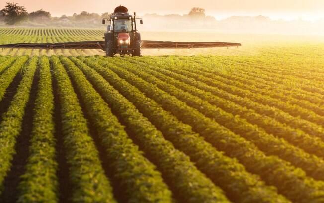Pesticida legal no Brasil foi proibido na União Europeia