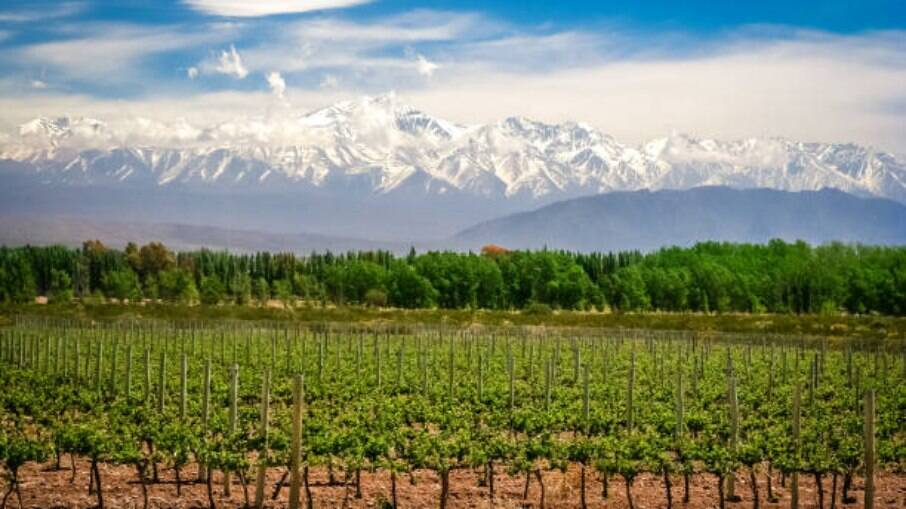 Mendoza é o centro da região vinícola da Argentina