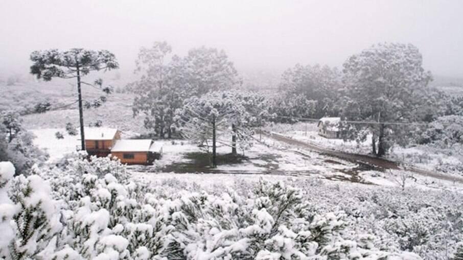 Cambará neve