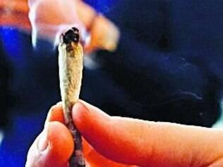 'Fumar em casa. Cultivar em casa' é o novo slogan em Washington