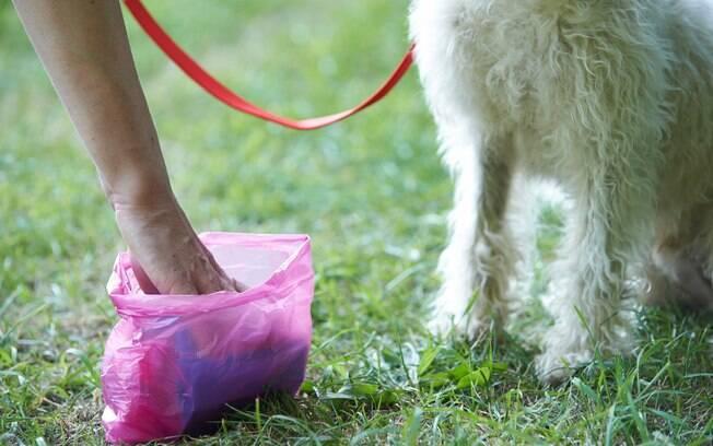 Craig Wood foi multado por não recolher cocô de cachorro do jardim