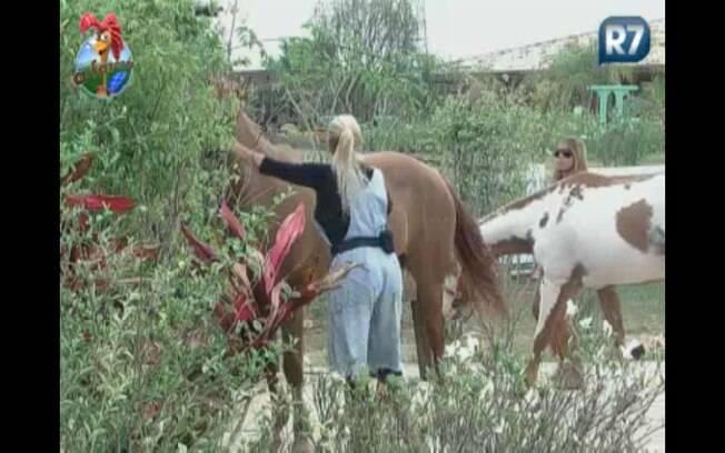 Peoas levam cavalos para escová-los