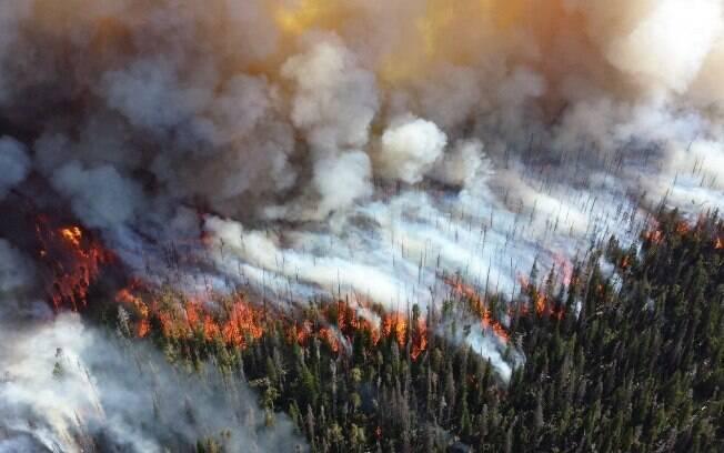Incêndios na Califórnia são considerados os piores da história do estado americano