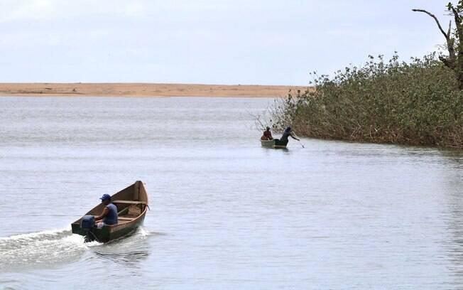 Levantamento do valor foi realizado pelo Instituto Brasileiro do Meio Ambiente e dos Recursos Naturais Renováveis