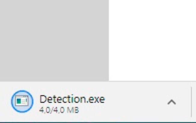 O site fará download de um arquivo de detecção automaticamente.