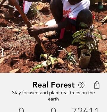 Aplicativo propõe plantar árvores em vez de procrastinar