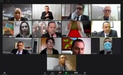 """Vereadora de Cuiabá faz """"sarrada"""" em sessão virtual"""