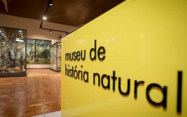 Aps reforma, Museu de Histria Natural reabre nesta quarta-feira