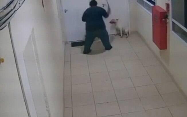 Vídeo: homem é preso por espancar cachorro em Campinas
