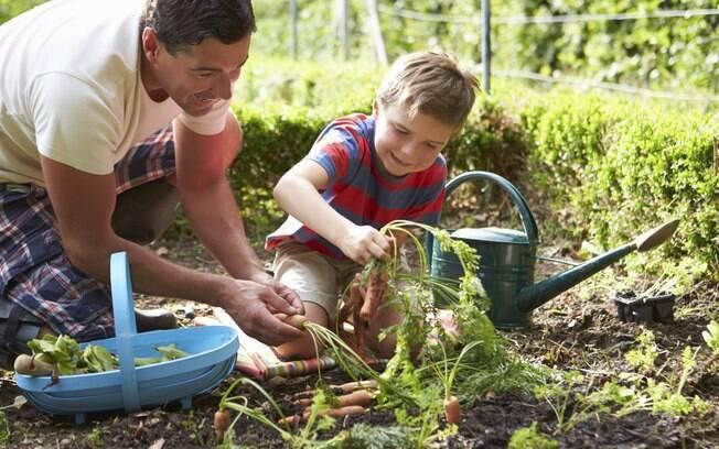 Ensinar as crian as a amar a natureza tarefa importante - Una casa da amare ...