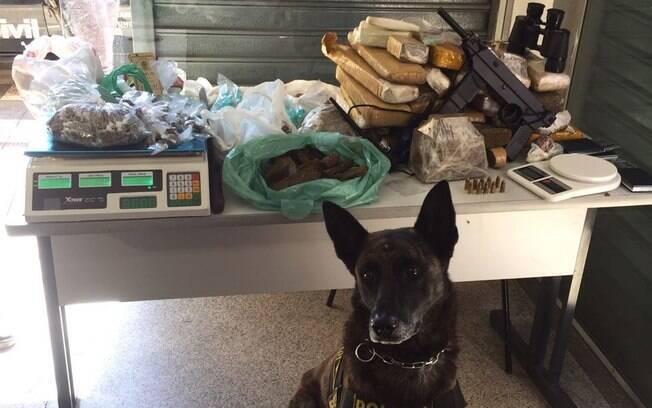 Drogas e metralhadora encontradas pelo cão Seth e apreendidas pelo Canil da PM