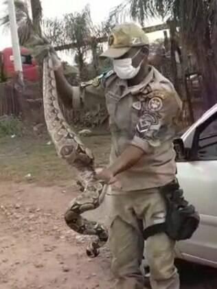 homem segurando cobra
