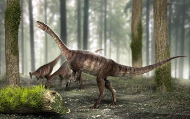 Fóssil de dinossauro brasileiro foi descoberto em rochas de 225 milhões de anos, no RS