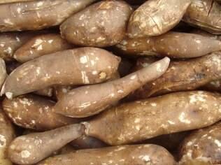 Batata yacon ajuda a controlar a taxa de açúcar no sangue, preocupação de diabéticos