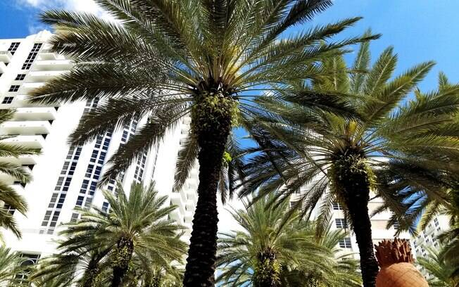 Brasileiro é a terceira nacionalida que mais compra imóveis em Miami