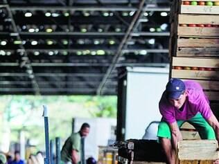 Mais caro. Redução na oferta de hortifrúti fez preços subirem em média 7,8% ontem, na CeasaMinas