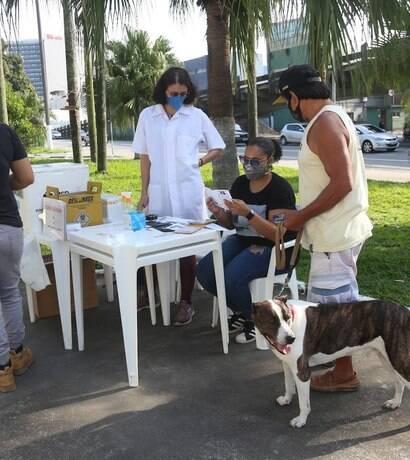 Mais de 3.500 cães e gatos são vacinados em Santos em quase três meses