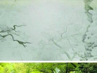 Na obra de Gabriela, paisagem é completada à lápis