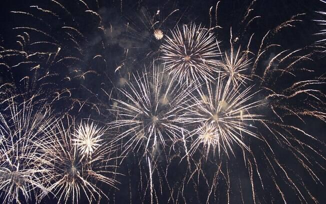 Os fogos de artifício podem prejudicar muito os animais