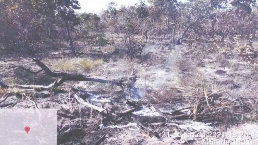 Fazenda no Pantanal teve áreas queimadas de forma irregular e intencional