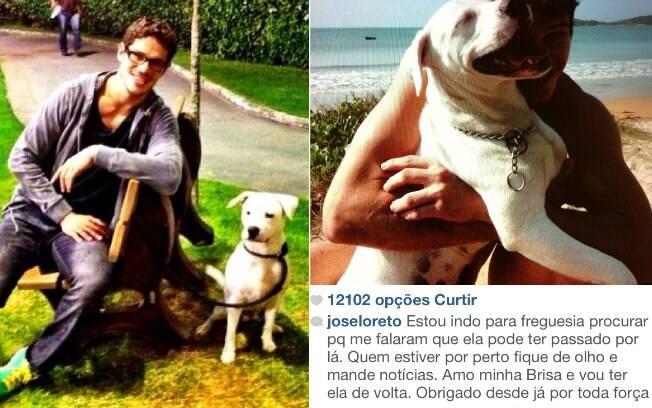 José Loreto procura sua cadela: 'Me ajudem pelo amor de Deus'