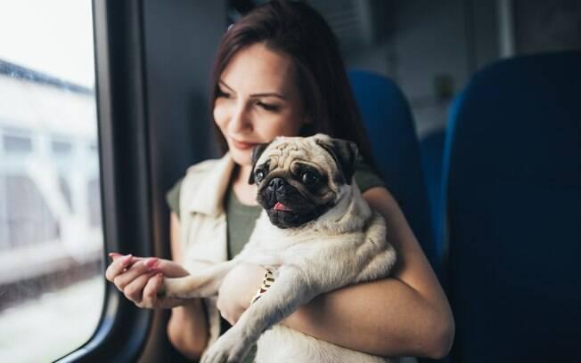 O passeio de trem e metrô ainda não é possível no Brasil como na Europa