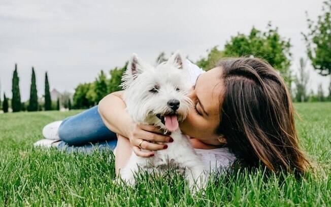 Saúde mental: pets podem ser aliados no combate ao estresse