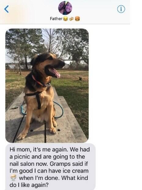 Filha deixa seu cãozinho com o pai e a situação torna-se mega engraçada