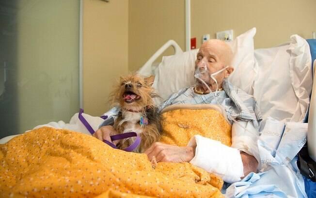 Paciente terminal e seu cachorro