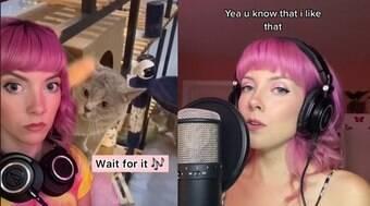 Artista faz sucesso ao traduzir sons de animais em canções; ouça