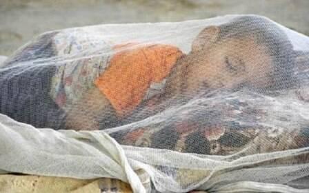 Esperança contra a malária