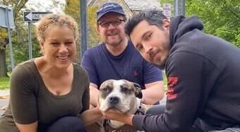 Cachorro que teve o dono assassinado encontra um novo lar