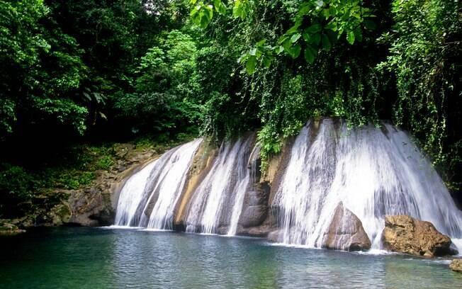 Reach Falls tem cascatas, cachoeiras e quedas d'água