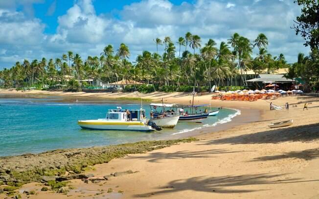 Há muito o que fazer na Praia do Forte, independentemente da época que você escolher para viajar para lá com a família