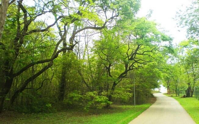 Parque Olhos D'água ocupa uma área de 21 hectares, na Asa Norte
