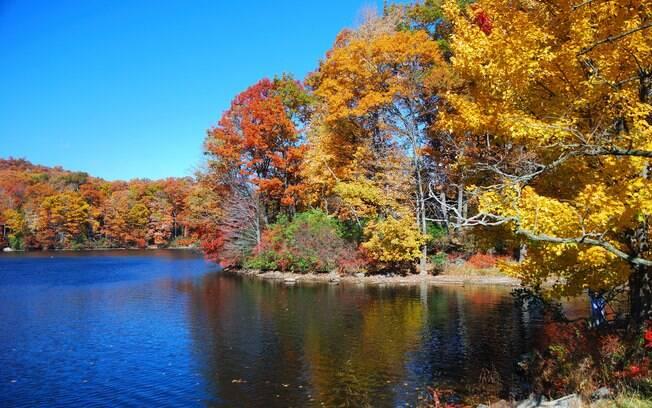 Vale do Hudson conta com mais de 50 tipos de árvores que mudam de cor no outono
