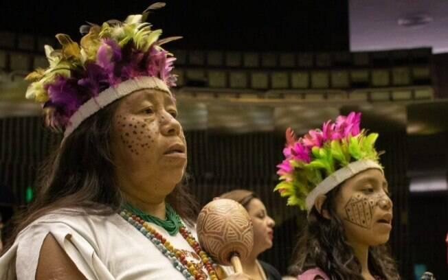 Indígenas recorreram ao STF.