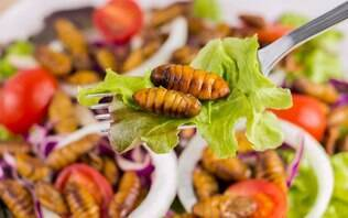 Comer insetos pode te ajudar a evitar o câncer, diz estudo
