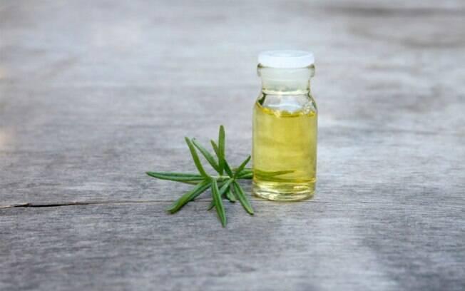 O óleo de alecrim é estimulante e ajuda na concentração