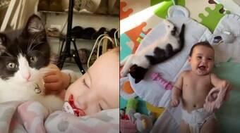Gatinho adotado ajuda a cuidar de sua irmãzinha humana