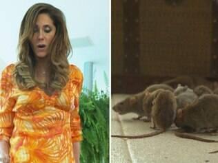 Tereza Cristina esbarra no trinco do baú e libera centenas de ratos