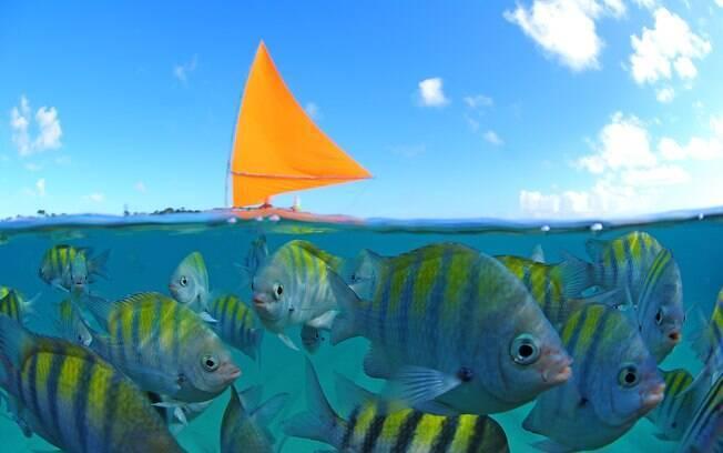 O casal pode fazer um passeio de jangada e aproveitar na nadar com os peixinhos ou curtir o visual com um drinque