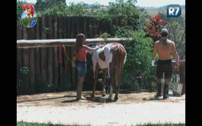 Raquel ajuda Marlon a dar banho na égua Bodereque