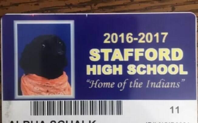Muito fofo: cachorro ganha foto em anuário escolar