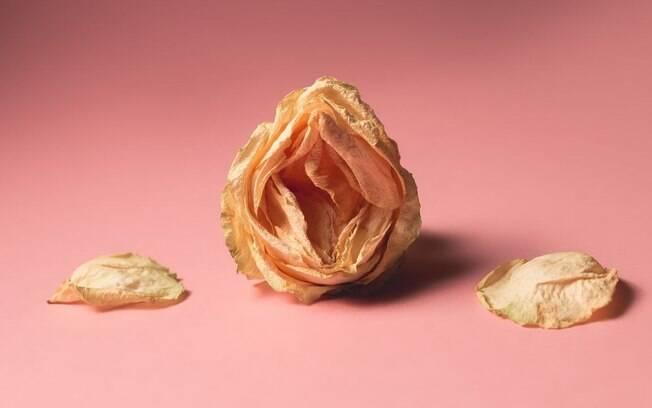 Libido: entenda como o envelhecimento afeta o apetite sexual da mulher