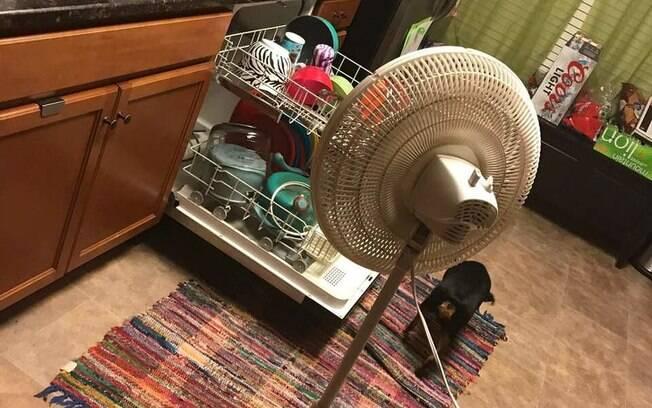 O que é um secador de louças perto de um ventilador? Homem encontra maneira inusitada para secar as louças e chama atenção