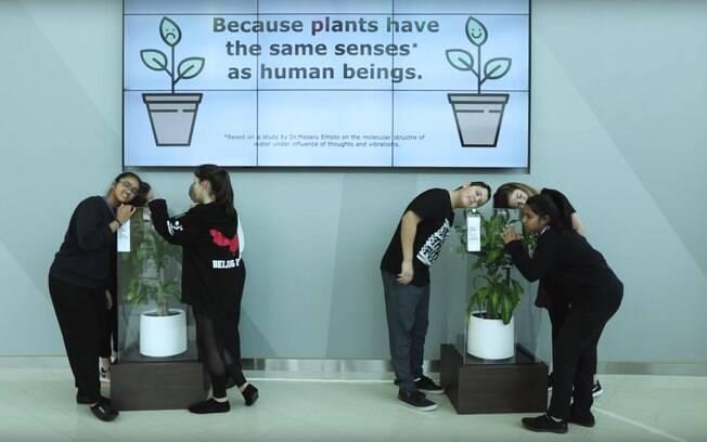 Crianças foram chamadas para gravar comentários negativos e positivos que foram, depois, colocados juntos das plantas