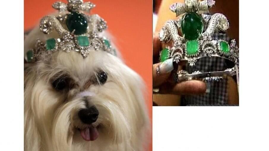 A tiara foi produzida pelo designer de joias tailandês Riwin Jirapolsek, especialmente para sua cadelinha maltes